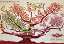 Lịch sử giống cà phê Arabica Catimor Khe Sanh (Quảng Trị)