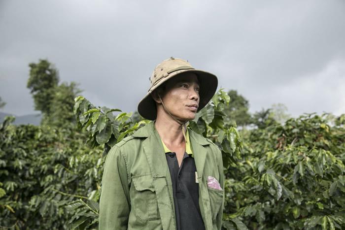 Vì sao giá cà phê giảm giá sâu nhưng người tiêu dùng không hề hưởng lợi?