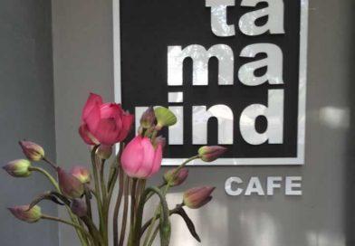 Tamarind Cafe – Quán cà phê thú vị tại TP. Đông Hà